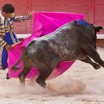 torero-stierkampf