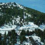 winter-in-andalusien-mit-schnee